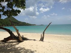 Hermitage Bay, Antigua Hermitage Bay, Caribbean Honeymoon, Amazing Destinations, Paradise, Around The Worlds, Beach, Water, Outdoor, Antigua