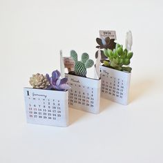 2014 Succulents Mini Desk Calendar
