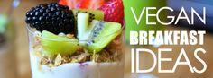 Healthy #vegan #breakfast ideas: http://www.vegan.com/videos/healthy-breakfast-ideas/