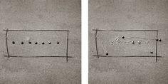 Daniel Ranalli's snail drawings