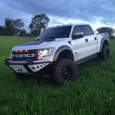 Ford Raptor Truck, Svt Raptor, Lifted Trucks, Ford Trucks, Future Trucks, Ford F Series, Four Wheel Drive, Ford Ranger, Raptors
