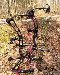 Elite Archery, His and Hers, SunRy's Archery maybe he should take this up to we can get his an her stuff ;)