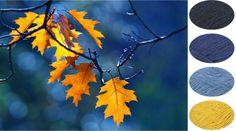 autumn-einband-herfst