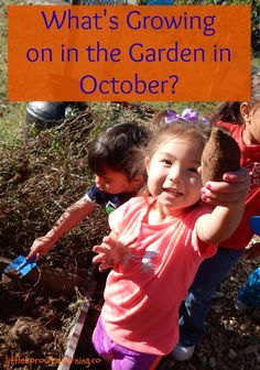 What's growing in the preschool garden in October?
