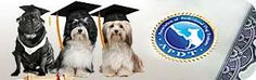 Introduction to Canine Genetics  Association of Professional Dog Trainers Education and Online eLearning