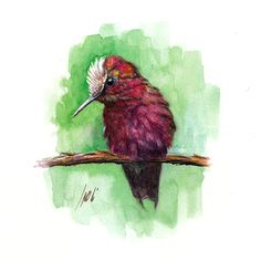 Bird painted by Ali Naseri size Watercolour Painting, Ali, Bird, Animals, Instagram, Animales, Animaux, Birds, Ant