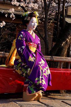 """""""The maiko Mamesumi in a deep purple kimono. (Source) """""""