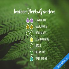 Indoor Herb Garden - Essential Oil Diffuser Blend