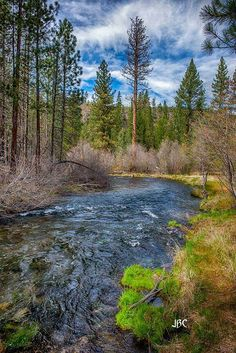Hat Creek in Shasta County. Photo by John Caddell