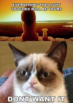 HAHA!  I Just Can't Wait to Not Be King #grumpycat