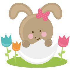 Bunny In Eggs