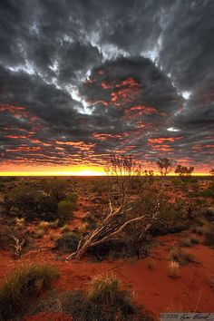 On the edge of the biggest middle-of-nowhere. Australian outback sunrise.