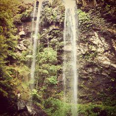Australia instagram Waterfall, Australia, Instagram Posts, Outdoor, Outdoors, Waterfalls, Outdoor Games, The Great Outdoors