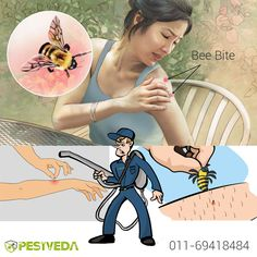 Are you afraid of Bee bite and unable to remove their colony? Don't Worry!!  Contact us - 011-69418484 Visit- www.pestveda.com #beecontrol #pestcontrol