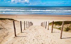 strand - Google zoeken