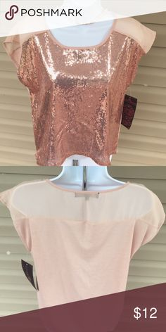 NWT Dusty Rose top w/sequence NWT Dusty Rose Top. Front has sequence- sheer shoulder- cotton back Almost Famous Tops Tees - Short Sleeve