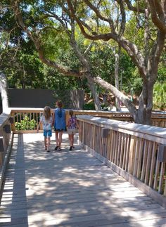 Family Travel Omni Amelia Island Plantation. Love how the resort works around nature with walkways and boardwalks throughout the resort. #familytravel