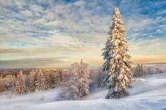 Так как настоящей зимы мы в этом году уже не увидим (а кое кто и не видел), то давайте хотя бы посмотрим на эти удивительные снимки, которые сделал фотограф…