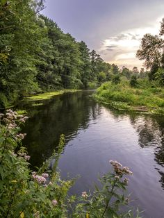 Photograph Wkra River in Poland by Robert Baumann on 500px