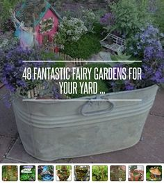 48 Fairy Garden Ideas http://gardening.allwomenstalk.com/fantastic-fairy-gardens-for-your-yard Mini Fairy Garden, Fairy Gardening, Dream Garden, Fairy Garden Houses, Gnome Garden, Mini Gardens, Miniature Fairy Gardens, Little Gardens, Create A Fairy