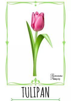 Nursery, Clip Art, Herbs, Children, Spring, Pictures, Diy, Poster, Young Children