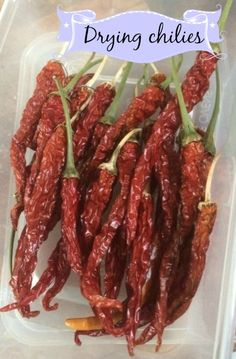 Preserving your excess chilies by drying them couldn't be easier, here's how we do it. First select your chilies for drying, it's best to use ones that are in good condition with no blemishes. Find...
