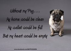 Life is nothing without wet kisses, wrinkly faces, a little dog hair, and paw prints on the floor and in your heart. :) <3