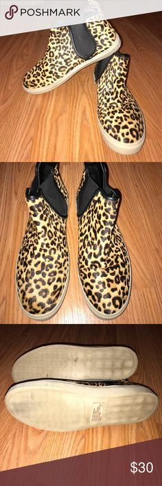 Steve Madden booties Leopard cute booties. Slightly worn but in good condition. Inside soles are in perfect condition. Shoes are real cow hair. For some reason there is no size on the shoe . I'm an 8.5 and they are snug so I would say they are an 8. Steve Madden Shoes Ankle Boots & Booties