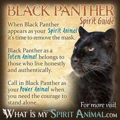 Black Panther Spirit Guide
