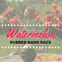 Get some rubber bands and a watermelon, and get ready to have some fun! See who can make their watermelon explode first with Watermelon Rubber Band Race! Mutual Activities, Youth Group Activities, Youth Games, Activities For Adults, Youth Groups, Therapy Activities, Summer Camp Games, Camping Games, Camping Ideas