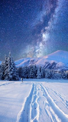 The Milky Way in a winter sky. Winter Szenen, Winter Time, Winter Season, Winter Night, Winter Start, Snow Night, Winter Road, Winter Photography, Nature Photography