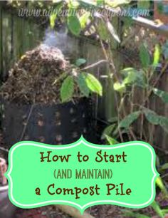 Composting is one the best (and cheapest!) ways to fertilize your garden! If you're new, check out how to start (and maintain!) a compost pile!