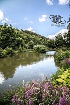 Reflection in pond / paysage et reflet sur étang by etix #landscape #travel
