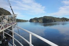 Discovery Cruises (multi-day) using the Milford Wanderer, Fiordland National Park, New Zealand.