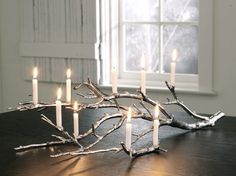 This is beautiful! Spray paint a branch with silver metallic. Add led lights in between for a centerpiece on dining table.