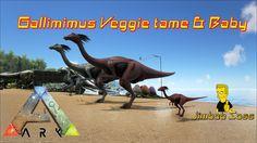 ARK Survival Evolved Gallimimus Veggie tame & Baby