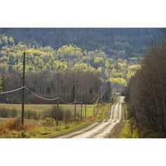 Posterazzi A Country Road With Electrical Wires Running Along It Thunder Bay Ontario Canada Canvas Art - Susan Dykstra Design Pics (38 x 24)