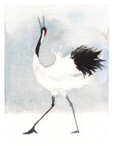watercolor crane   beautiful crane bird painting (13)