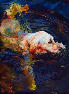 Water Dance 2 by Kelly McNeil beautifully captures light on fur and water