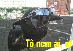 Meme (scheduled via http://www.tailwindapp.com?utm_source=pinterest&utm_medium=twpin&utm_content=post115699161&utm_campaign=scheduler_attribution)