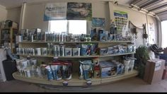 The Pond Shop will be open today. Stop in from 10 until 2. We are fully stocked with water treatments pumps  filters and fish food.  We have koi and goldfish in stock. Start lilies are starting to make it to the surface of the tanks.  Our display garden is up and running.  Come out and see us!Neptune's Water Gardens is the premier water feature design and installation company in the #Omaha Metro area. Our naturally balanced low-maintenance ecosystem ponds work with Mother Nature not against…