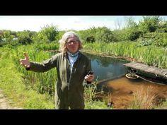 Piscinas biologicas davidpaganbutler - YouTube