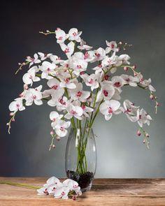 Forsythia silk flower stem pinterest silk flowers foyers and phalaenopsis orchid silk flower stem mightylinksfo