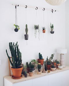 """3,921 Likes, 33 Comments - Maria Bergström (@thehiddenadventure) on Instagram: """"And here is the rest of the plant gang. The new plant hanger is blending in perfectly with the ones…"""""""