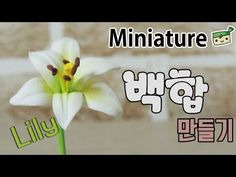 백합 미니어쳐 만들기 Lily [고무인간] 클레이 꽃 miniature - YouTube