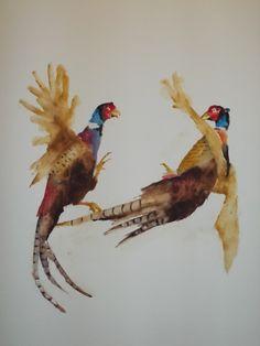 Pheasants Fighting  III