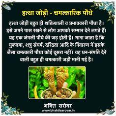 Sanskrit Quotes, Sanskrit Mantra, Vedic Mantras, Hindu Mantras, Tips For Happy Life, Lord Shiva Mantra, Astrology Hindi, Chakra Chart, Positive Energy Quotes