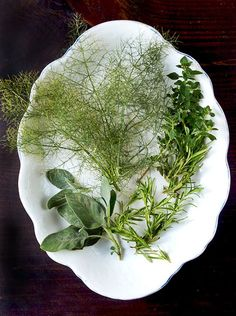 Freeze & Preserve Fresh Herbs in Olive Oil — Kitchen Tip