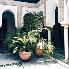 ...#travel #marrakesh