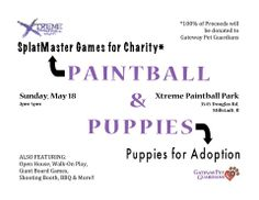 Paintball for pups!